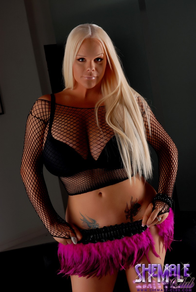 Candy Transesual Porn holly sweet gorgeous blonde transsexual free shemale gallery