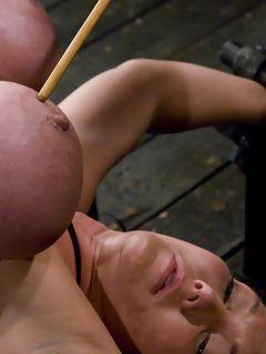 schwulen porno bilder salitos couch